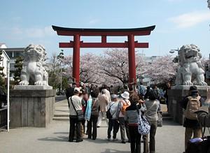 鶴岡八幡宮、二の鳥居と狛犬さん