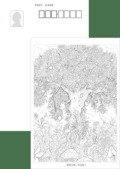 こころのぬりえ ポストカード 熊谷直人〈樹〉シリーズ